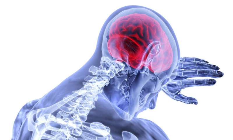 'Time lost is brain lost': New study looks at mobile stroke units and patient outcomes